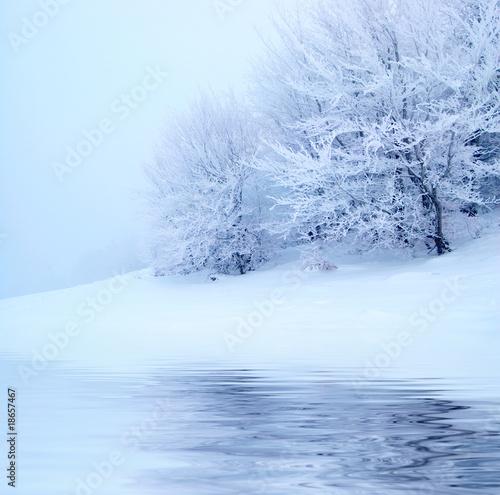 Printed kitchen splashbacks Light blue Winter trees