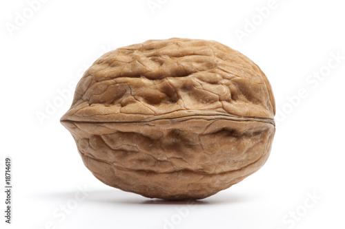 Fotografía  One single Walnut on white background