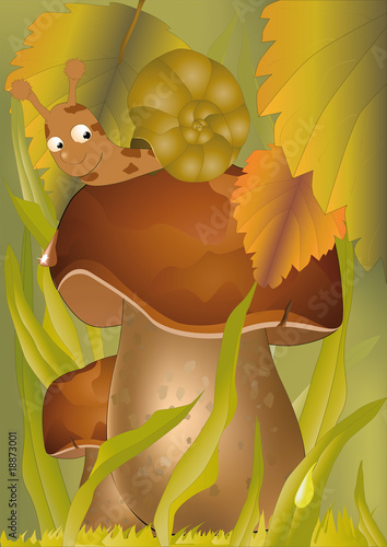 La pose en embrasure Forets enfants wood mushrooms and a snail