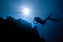 Plongeur En Contre Jour