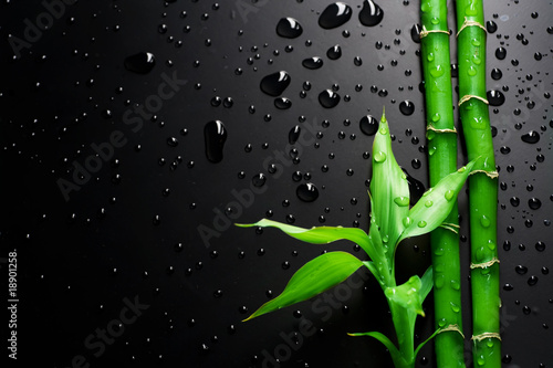 Foto op Aluminium Spa Bamboo over Black