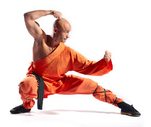 Shaolin Warrior Monk