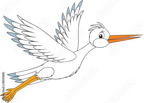 White stork #18939800