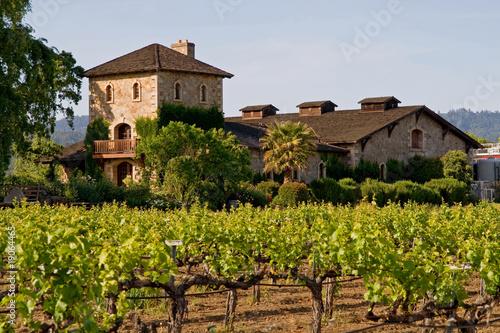 Spoed Foto op Canvas Wijngaard Napa Valley vineyard at sunset