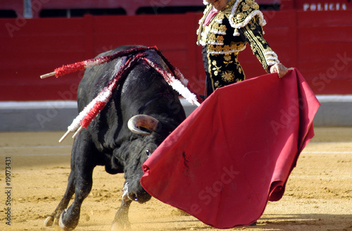 Deurstickers Stierenvechten Toros 1034