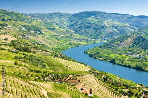 Foto op Aluminium Blauw vineyars in Douro Valley, Portugal