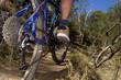 Riding a mountain bike through the bush fast.