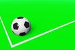canvas print picture - Fußball am Spielfeldrand