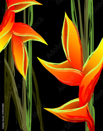 Digital painting of colourful flower design - 19135080