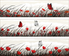Graphic Banners With Wild Flowers And Butterflies