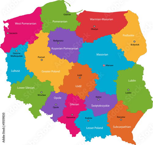 Cuadros en Lienzo  Vector color map of administrative divisions of Poland