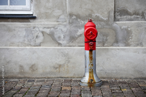 Red fire hydrant Poster