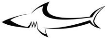 Shark - Tattoo