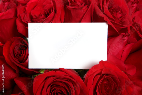 Fotografía  Anniversary or Valentine Blank Message Card Surrounded by Red Ro