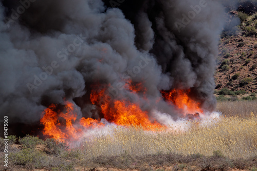 Fotografering  Fierce brushfire with flames