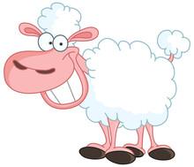 Funny Sheep With Big Smile