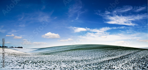 Winter landscape #19496631