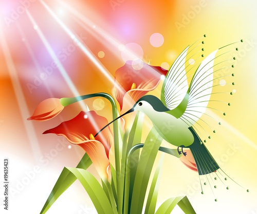 Fotorollo basic - colored humming bird (von Creativeapril)