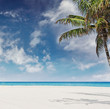 Beautiful beach in Miami Florida on a sunny day