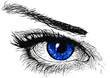 canvas print picture The Dark blue Eye`s