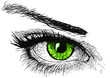 canvas print picture Green Eye