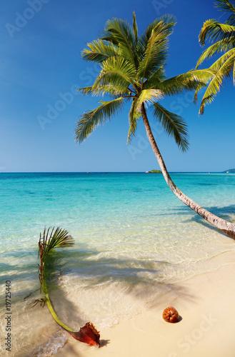 Poster Tropical beach Tropical beach, Kood island, Thailand