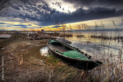 Obraz na plátně  la barca en  el pantano