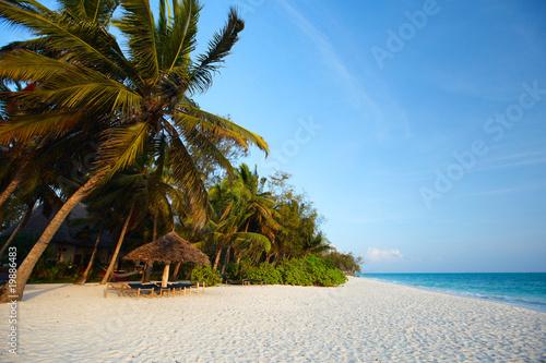 Poster Zanzibar Tropical beach