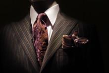 Dark Brown Striped Jacket, Pur...
