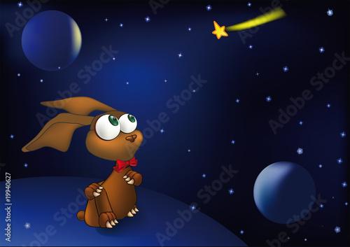 Foto-Lamellen (Lamellen ohne Schiene) - hare space and a falling star (von liusa)