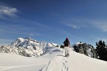 Snowshoeing In Mt Baker - Snoq...
