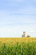 canvas print picture Corn field with silos