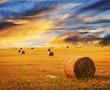 Leinwandbild Motiv Golden sunset over farm field