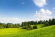 Sommergrüne Naturlandschaft in Süddeutschland