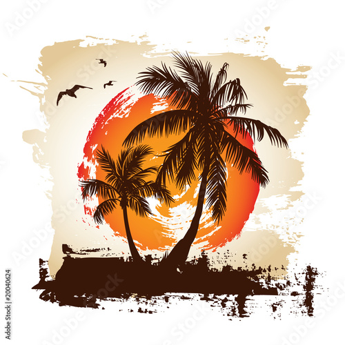 Tropical sunset #20040624