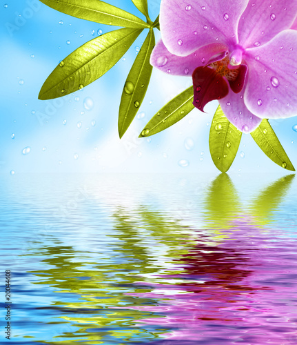 Foto-Duschvorhang - Wellness Hintergrund mit Spiegelung
