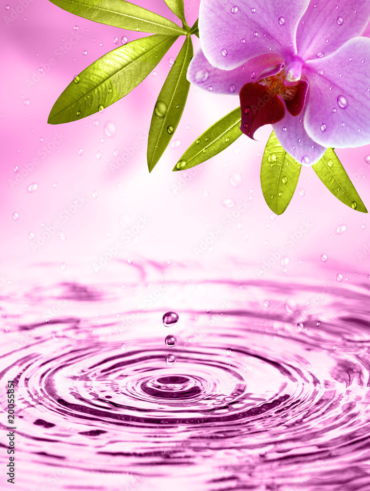 Fototapeta Wellness Motiv mit Orchidee