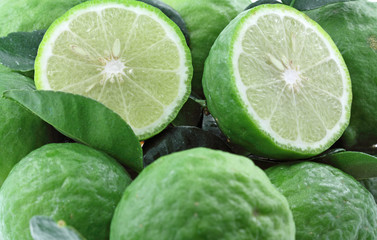 citrus hystrix, combava, agrume, combawa, fruits tropicaux