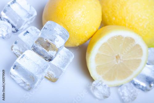 Poster Dans la glace Ice Lemon