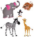 zwierzęta (dzikie)