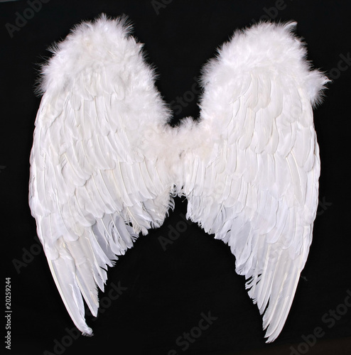 Fotografia, Obraz  Adult Angel Wings Photography Prop
