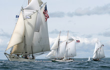Schooners Sail Over The Ocean Waves In The Bay Near A Harbor Off