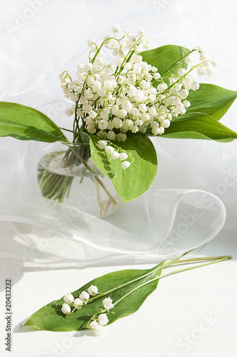 Wall Murals Lily of the valley in vase