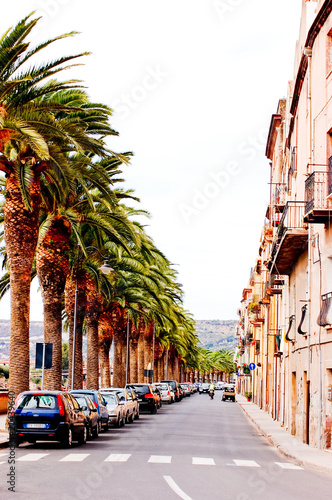 Photo  Street with palm trees in bosa, sardegna, vertical