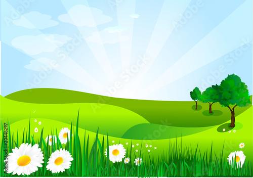 Papiers peints Vert chaux paysage printanier