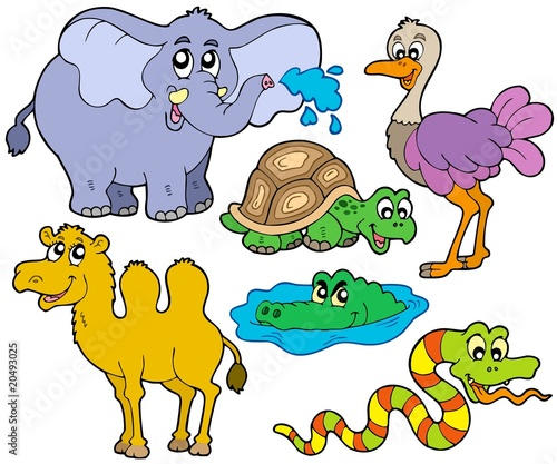 Deurstickers Zoo Tropical animals collection