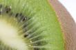 Kiwi - makro der Schale