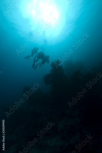 Fotobehang Duiken Silhouette of divers over a coral reef