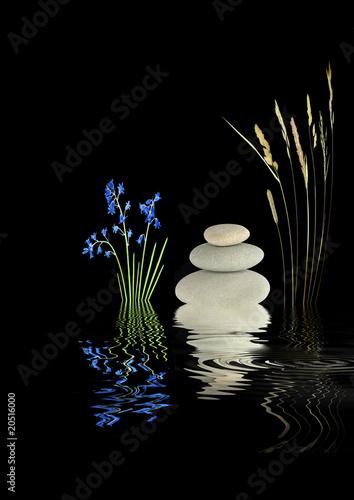 Fototapety, obrazy: Zen Garden Beauty