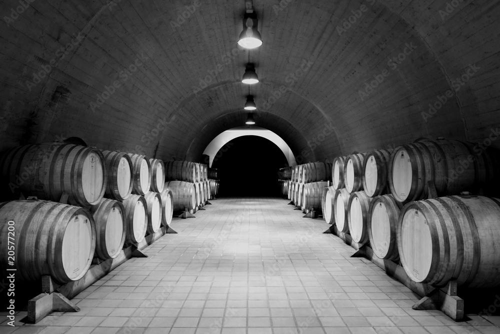 Fotografia Weinkeller,Bodega,Albarino,Rias Baixas,Galizien,Spanien